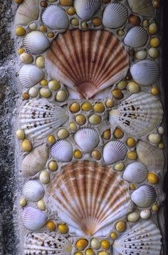 A close up detail of a shell mosaic